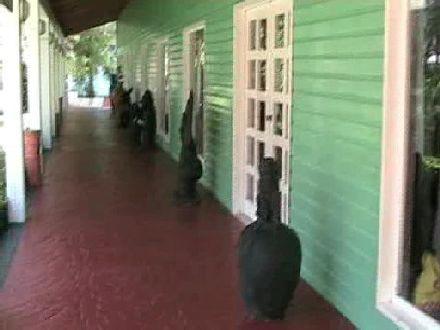 73cd26cb8 Ladenstrasse1 - Dein Traumurlaub in der Karibik... Punta Cana Bavaro ...